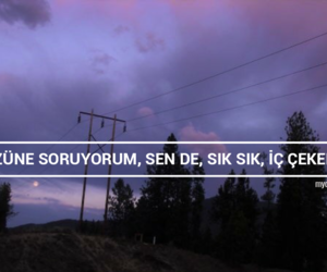 mor, purple, and tumblr image