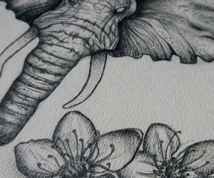 detail, drawing, and Fleurs image