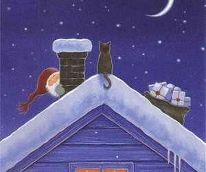 cat, christmas, and night image
