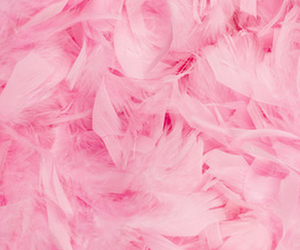 pink, background, and pattern image