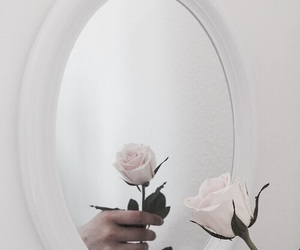 rose, aesthetic, and mirror image