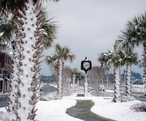 Deep South, christmas, and South Carolina image