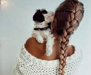 braid, dog, and puppy image