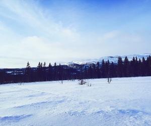 Skiing, snow, and christmas image