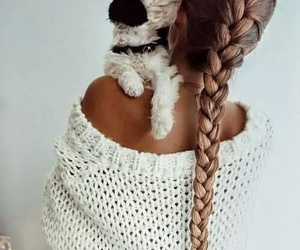 braid, dog, and puppy image