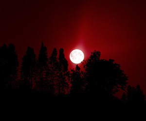 red, moon, and night image