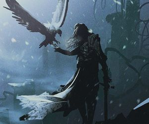falcon, aelin galathynius, and fantasy image
