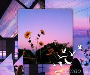 aesthetic, collages, and tumblr image