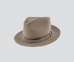 aesthetic and hat image