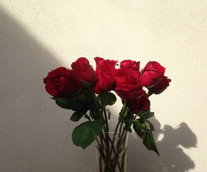 aesthetic, flores, and red image