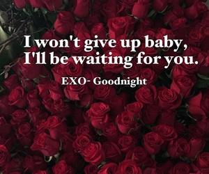 exo, goodnight, and Lyrics image