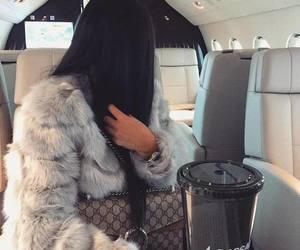 fur and luxury image