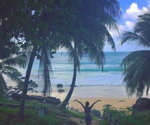 beach, blue, and brazil image