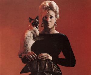 Kim Novak, 1950s, and cat image