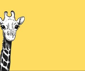 adorable, animal, and animal art image
