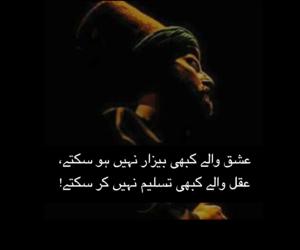 poetry, urdu, and pakistan image