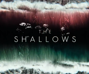 the shallows image