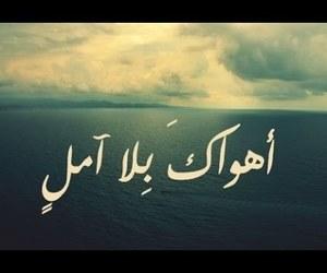 عربي, arabic, and baghdad image