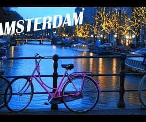 city, cycling, and tulips image