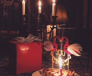 candles, couple, and flamingo image