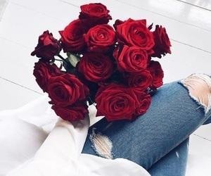 beautiful, fashion, and roses image