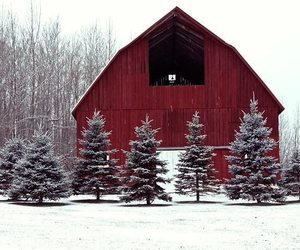 winter, barn, and country living image