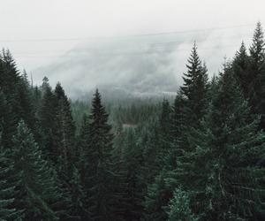 fog image