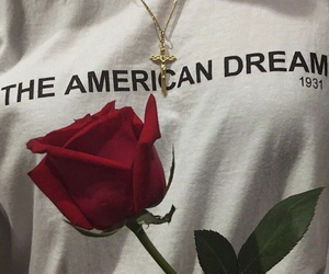 aesthetic, american dream, and aries image