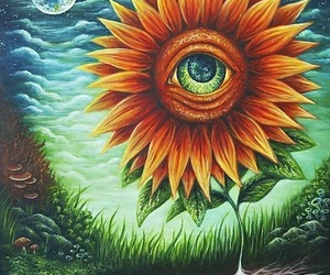 eye, sunflower, and art image