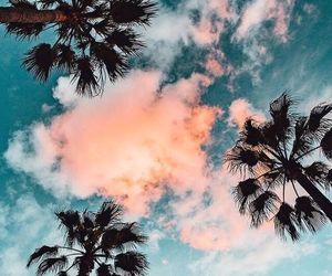 wallpaper, sky, and palm trees image