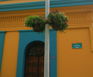 beauty, casa, and flores image