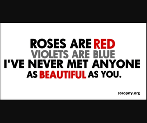 beautiful, poem, and roses are red image