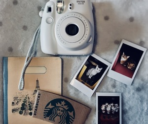 cat, fotografie, and instax image