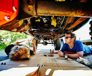 car, father, and learn image