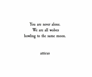 quotes, alone, and atticus image