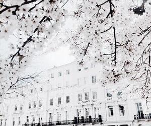white, house, and luxury image