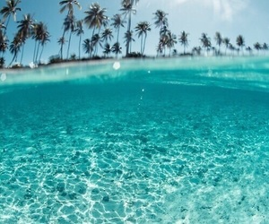 blue, ocean, and cool image