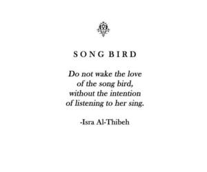 bird, listening, and qoute image