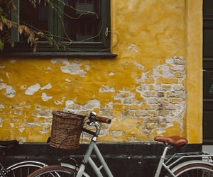 bicycle, wall, and yellow image