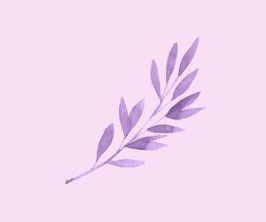 headers and purple image