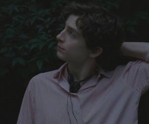 timothee chalamet, call me by your name, and elio and oliver image