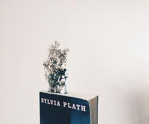 books and plath image