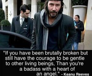broken, brutal, and gentle image