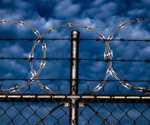blue, fence, and security image
