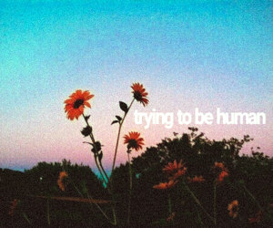 edit, flower, and tumblr image
