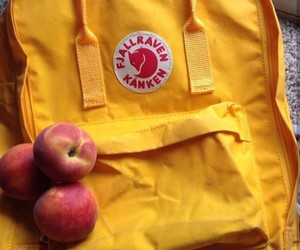 aesthetic, fjallraven kanken, and pale image