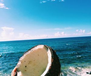 coconut, hand, and ocean image