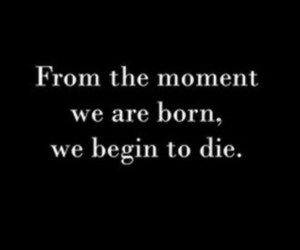 born, moment, and lief image