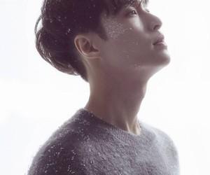 exo, lay, and zhang yixing image
