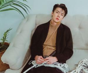 exo, bias, and exok image